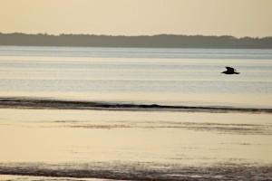 wpid-st-george-island-sunset.jpg.jpeg