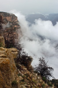Grand Canyon (33)