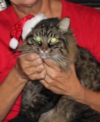 Christmas Merlin 2