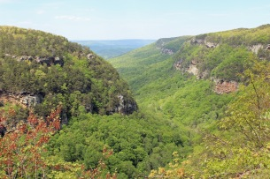 1 Cloudland Canyon (127)