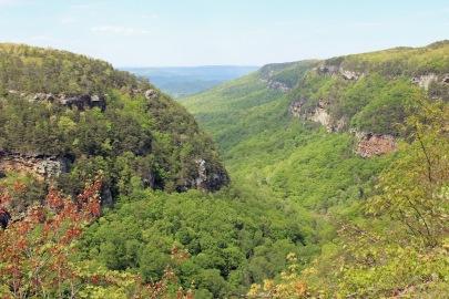 1 Cloudland Canyon (127)
