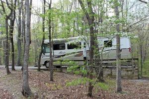 Quiet campsite