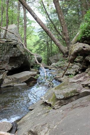 Above Cherokee Falls