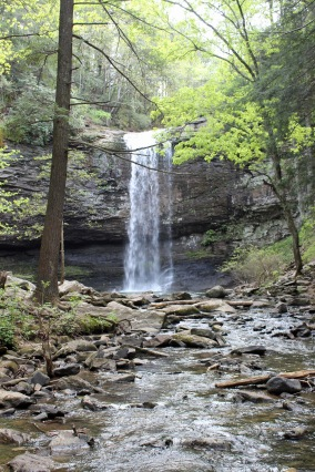 1 Cloudland Canyon (77)