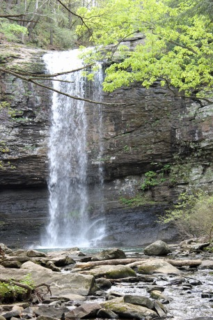 1 Cloudland Canyon (78)
