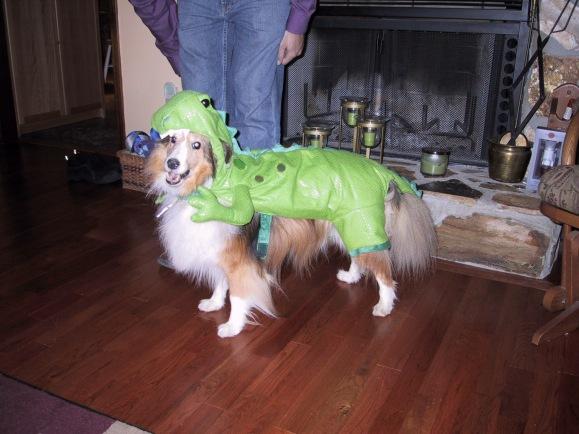 Yet another Halloween!