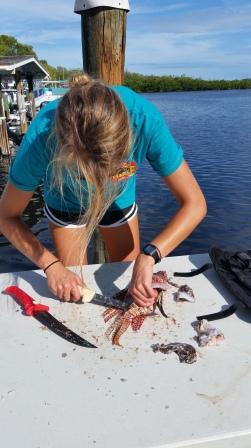 My peep filleting lionfish