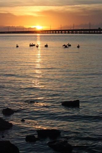 Sunset, Bahia Honda SP