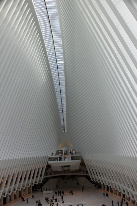 Transportation Oculus