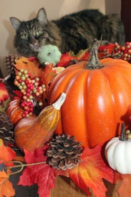 merlin-thanksgiving