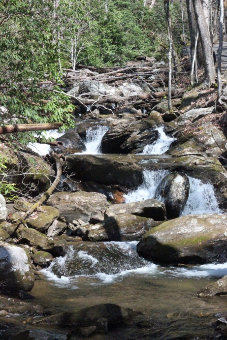 Along the creek