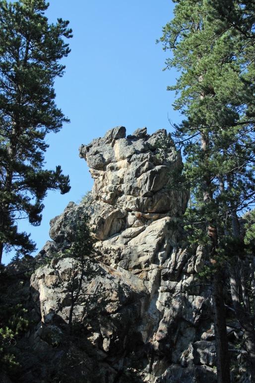 a Bighorn (12)