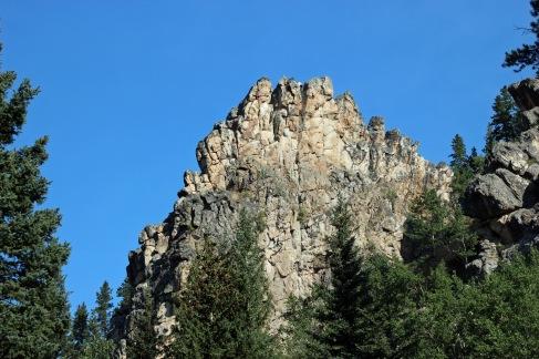 a Bighorn (24)