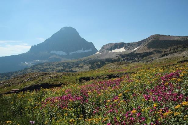 b Glacier NP (118)