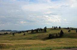 Custer SP (6) b