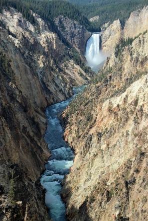Grand Canyon of Yellowstone (11)