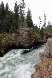 Grand Canyon of Yellowstone (37)