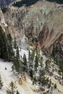 Grand Canyon of Yellowstone (45)