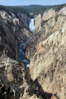 Grand Canyon of Yellowstone (6)
