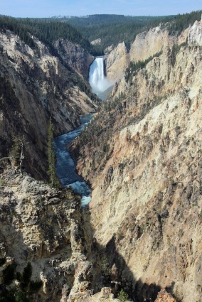 Grand Canyon of Yellowstone (6)