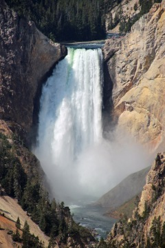 Grand Canyon of Yellowstone (7)