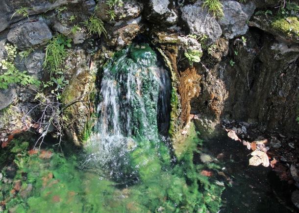 Hot Springs (17)