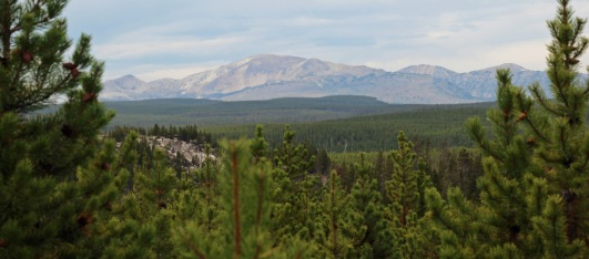 Mt. Holmes