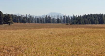 Pelican Valley 2