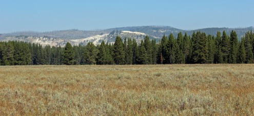 Pelican Valley