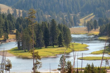 Yellowstone River 2