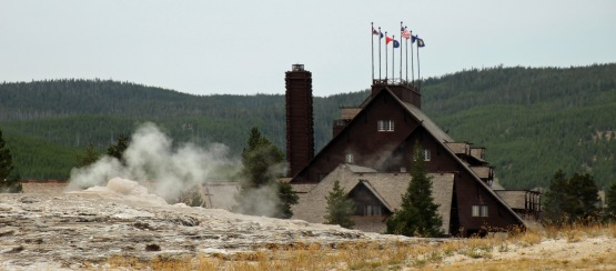 Yellowstone thermals (11)