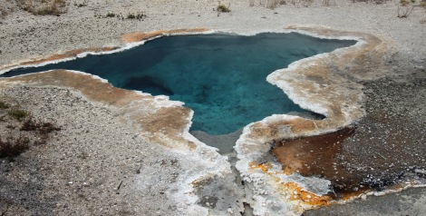 Yellowstone thermals (12)