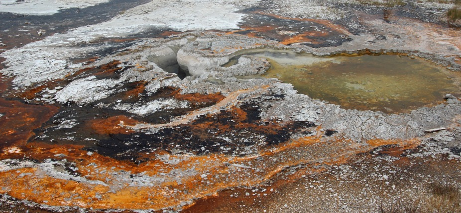 Yellowstone thermals (27)