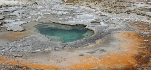 Yellowstone thermals (31)