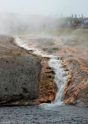 Yellowstone thermals (42)