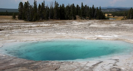 Yellowstone thermals (64)