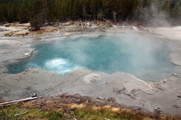 Yellowstone thermals (68)