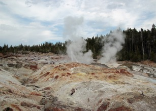 Yellowstone thermals (74)