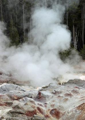Yellowstone thermals (79)