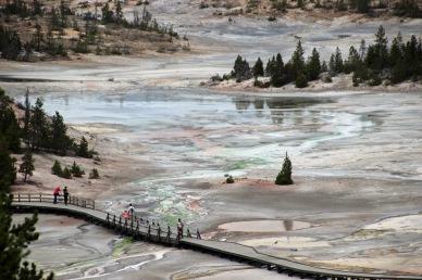 Yellowstone thermals (96)