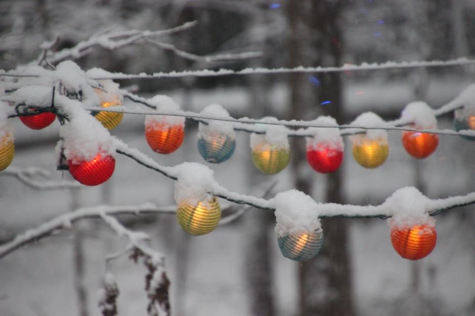 December Snow 2017 (44)