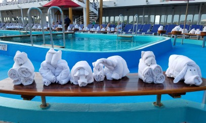 Even the towel creatures had their day by the pool.