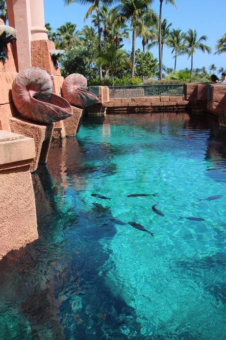 Atlantis Resort (13)
