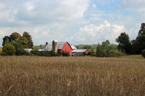 ~Rural MI (4)