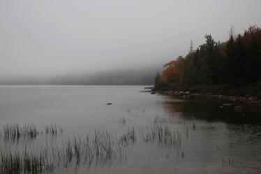 Acadia (115)