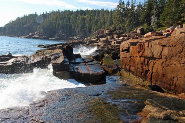 ~Acadia (42)