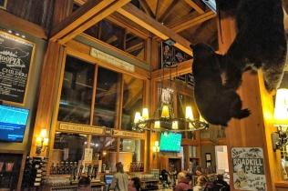 ~DB Lodge
