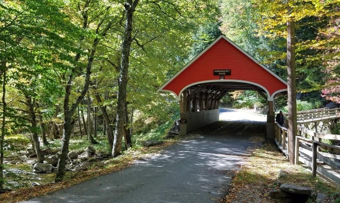 ~Flume Bridge