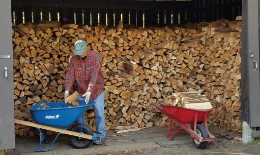 ~got firewood