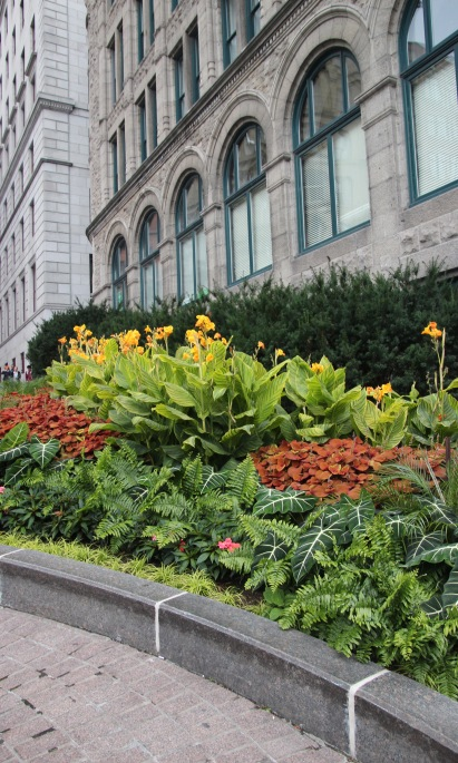 ~Montreal (1)